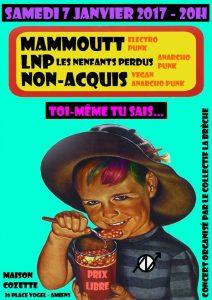 labreche-amiens-07012017